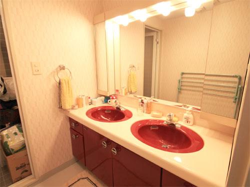 洗面は二つ