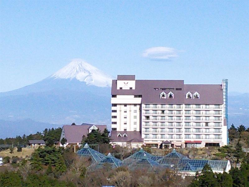 富士山を望みます