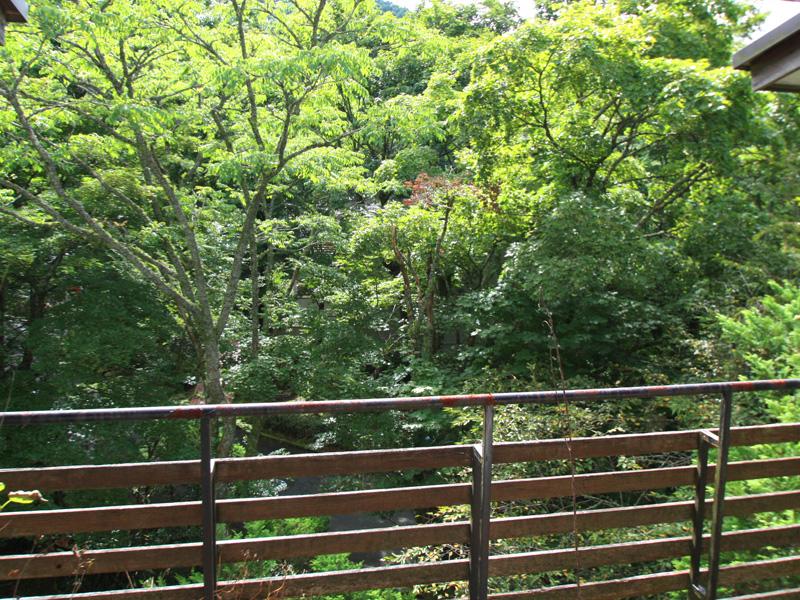 バルコニーからの眺望(夏)